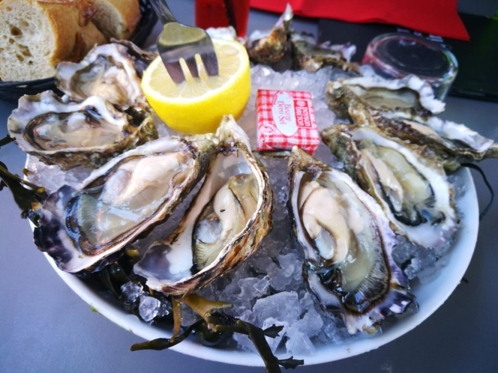 oysters in arcachon