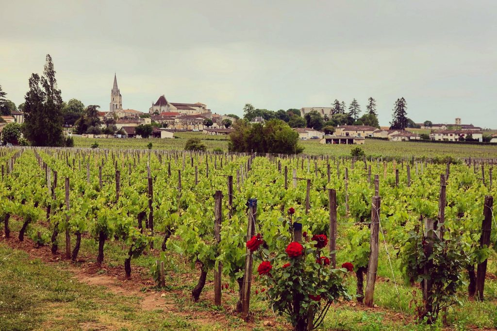 best wineries in Saint Emilion