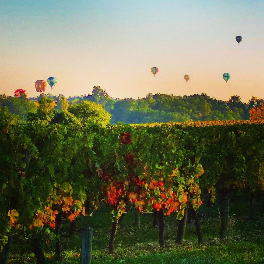 saint emilion hot air balloon