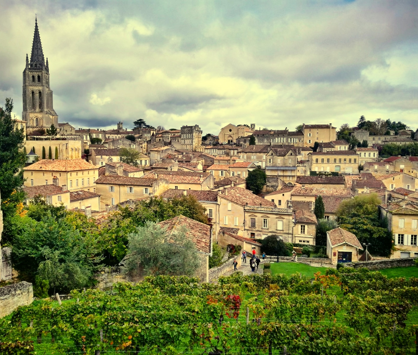 what to do in Saint emilion