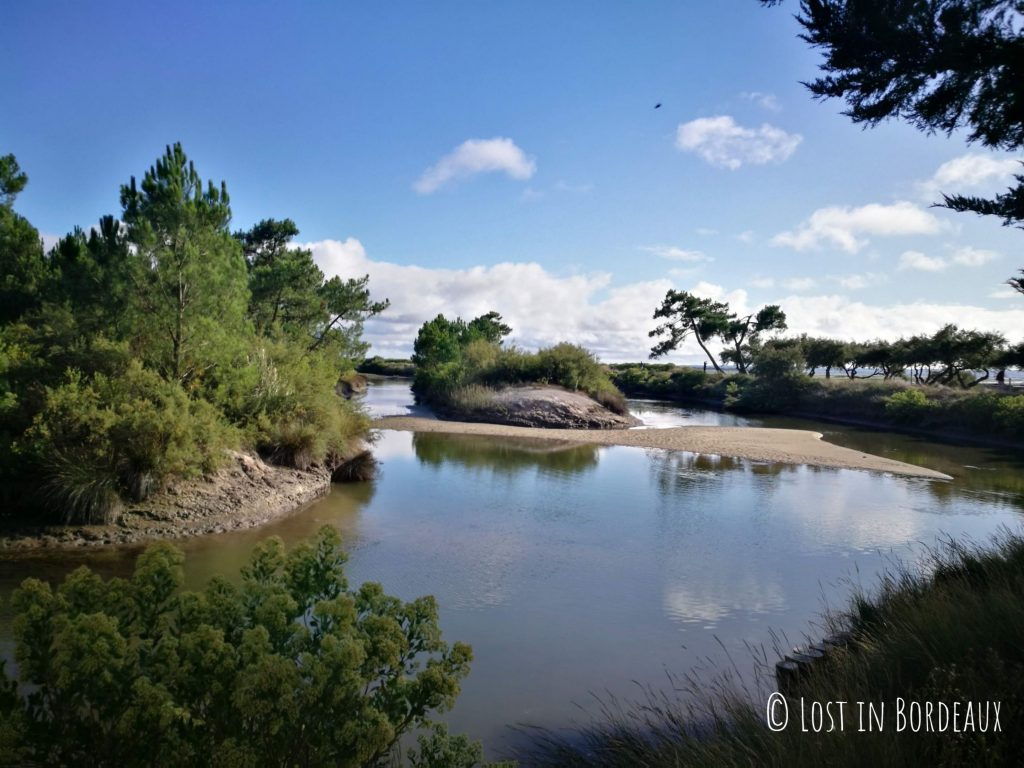 Lanton - take a walk on the Arcachon Bay