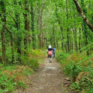 The best family friendly hiking trails in Gironde